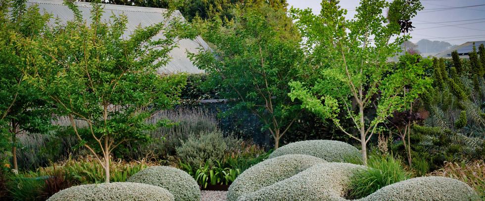 New Perennial garden beds