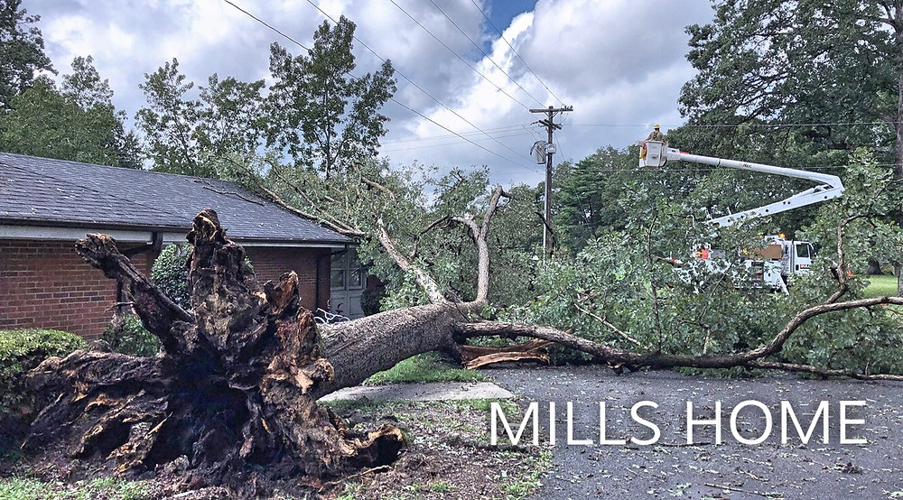 Mills Home trees down causing power outage
