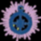 compass-sunburst-icon-ltpurple.png