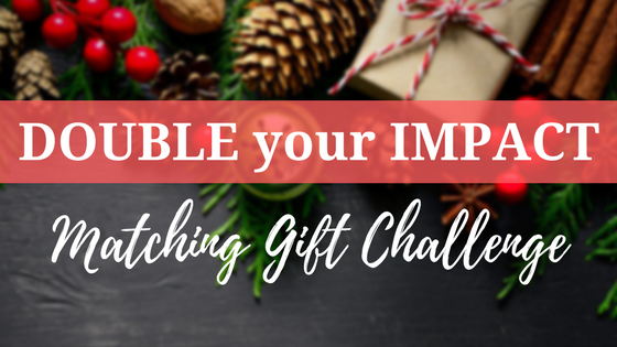 Double your Impact - $150,000 Matching Gift Challenge for Baptist Children's Homes