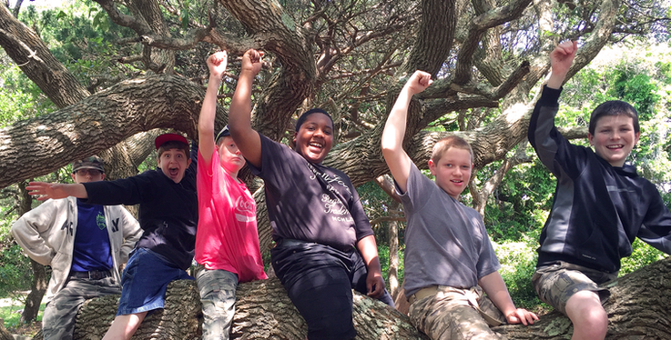Boys-Cheering-on-Tree-web.png