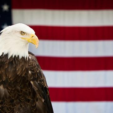 """The Ameri-con Dream"", an Irishman patiently awaiting his first U.S. convention trip."