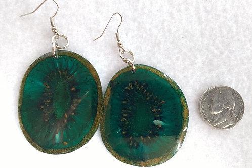 Real Fruit Earrings, Kiwi Slices Dyed Blue