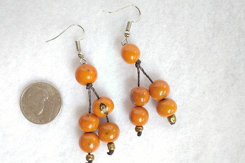 Acai Berry Earrings, Orange