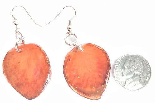 Real Fruit Earrings, Strawberry Slices