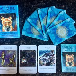 Wildlife Wisdom Deck