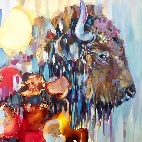 Bison Dreams