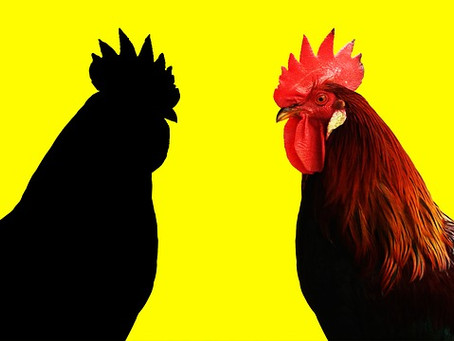 Year of the Rooster – Foreign Language Trademark Protection