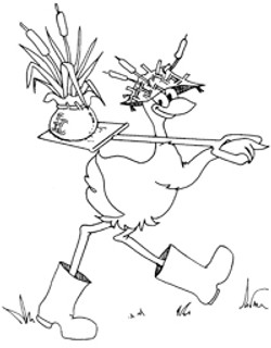 character cartoon