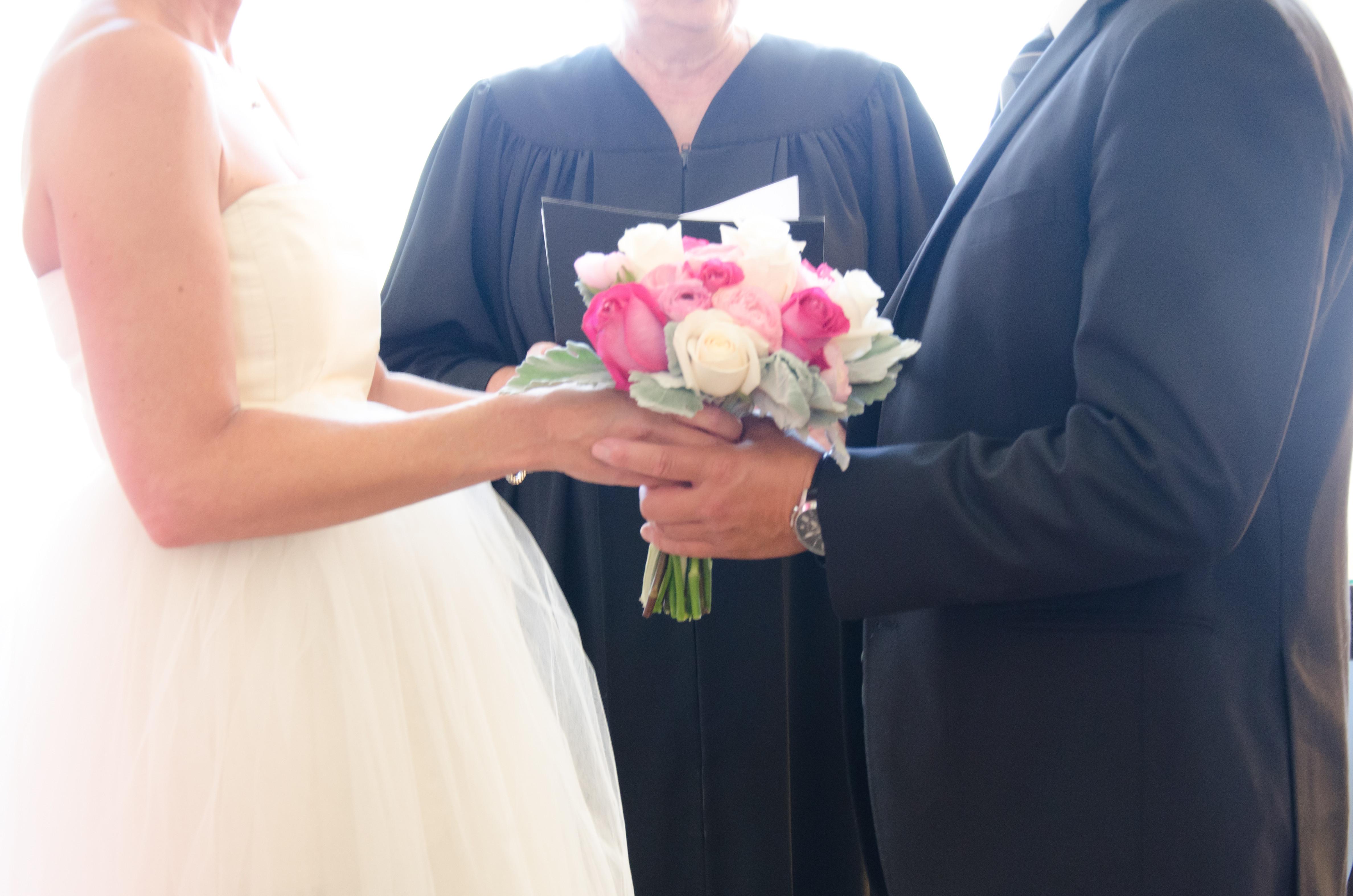 Engagement/Wedding/Elopement