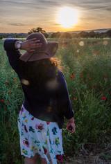 Poppy fields, Procence, France