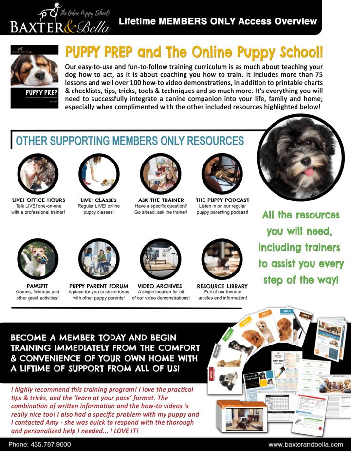 Lifetime Membership Overview