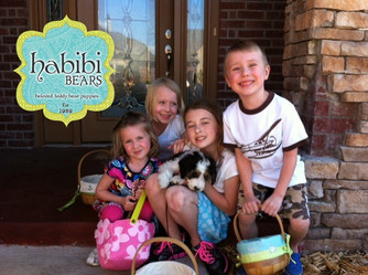 Meet Arthur: Tri-Color Standard Habibi Bear
