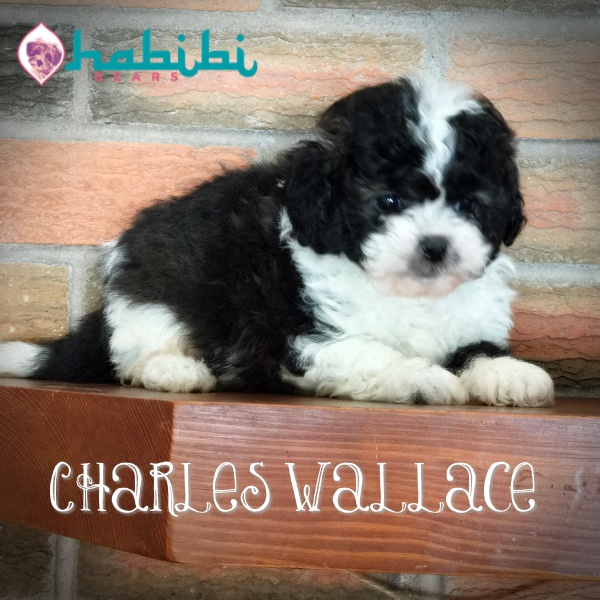 charles5