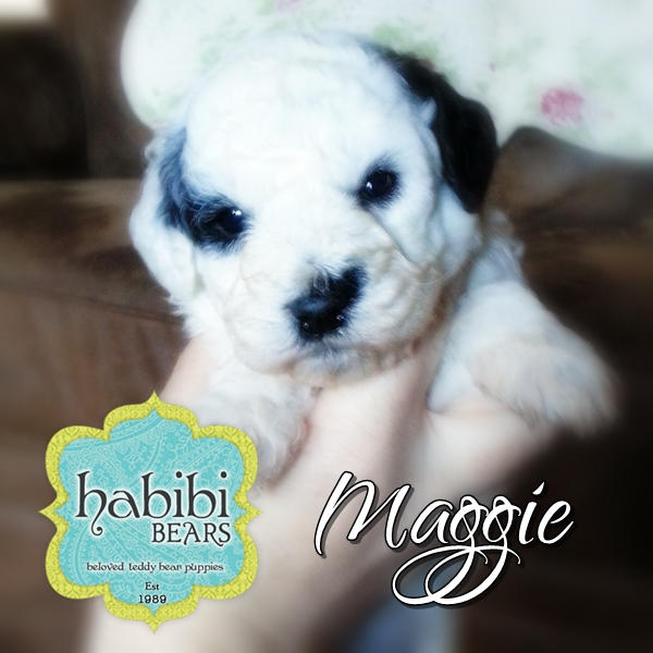 Maggie --girl--1800