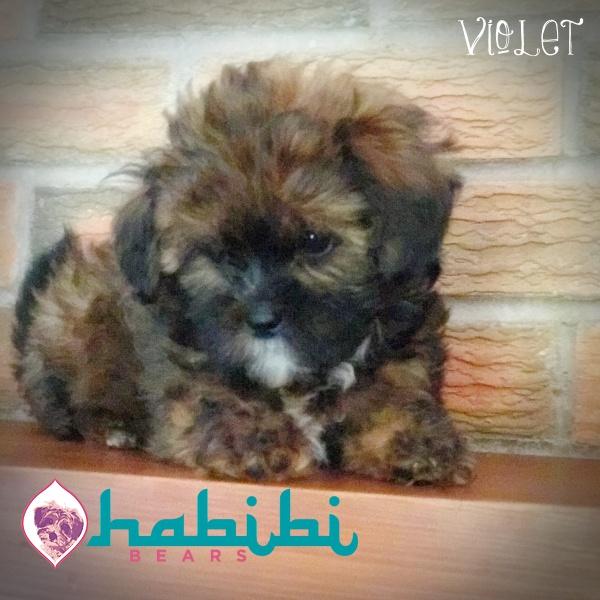 Violet Girl $2100