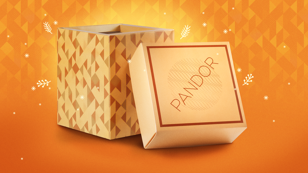 PANDOR-2-C.png