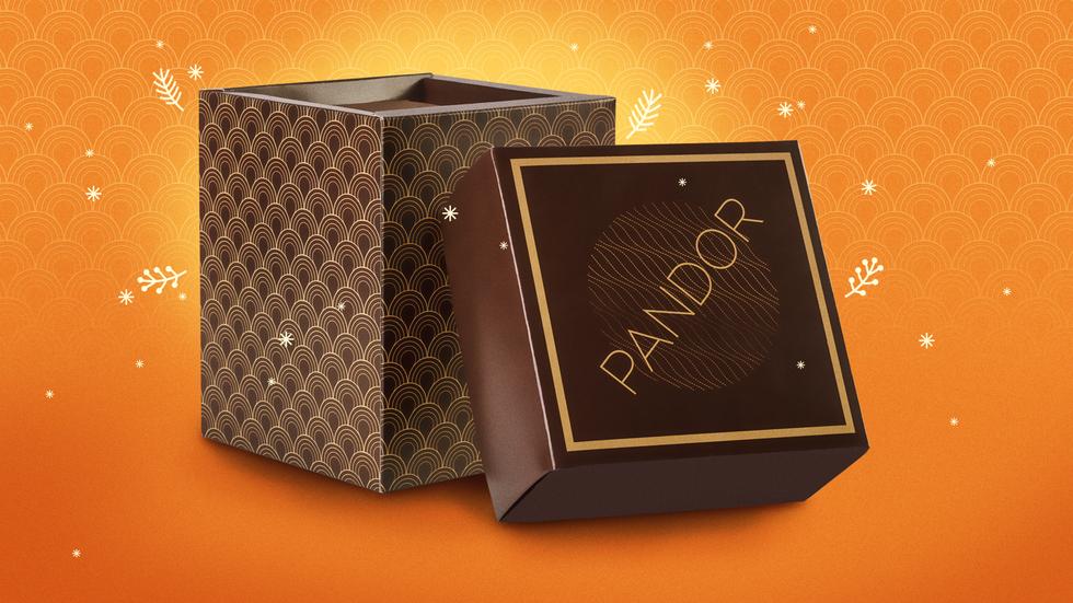 PANDOR-2-A.png