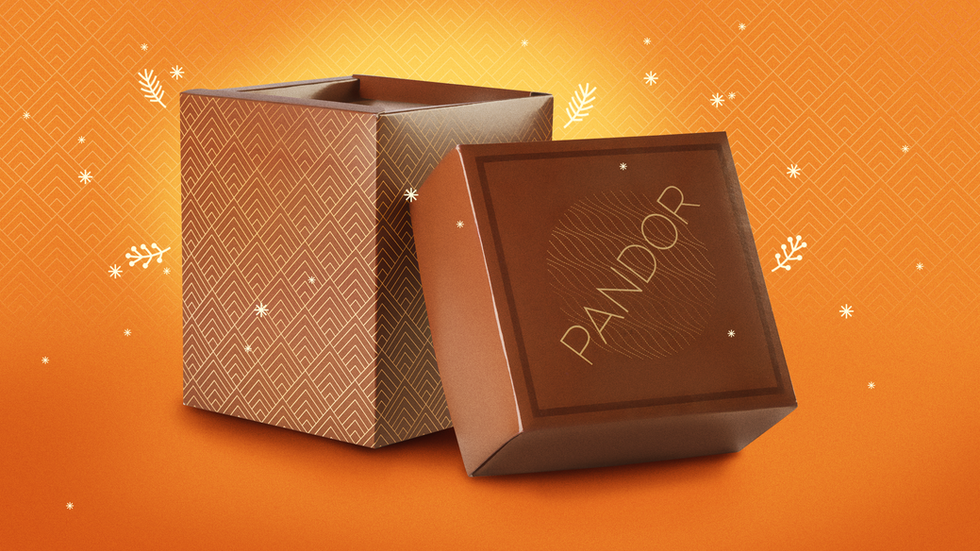 PANDOR-2-B.png