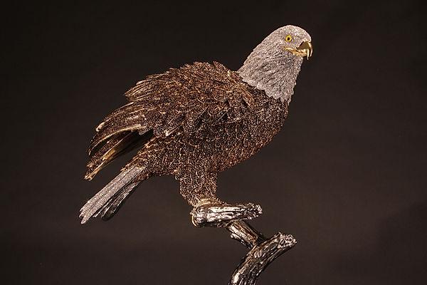 Bald Eagle 04.jpg