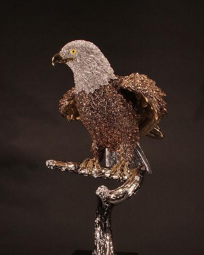 Bald Eagle 08.jpg