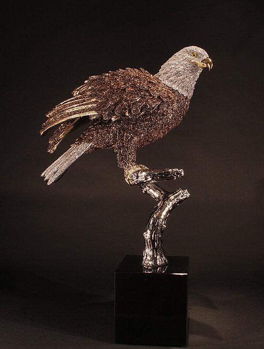 Bald Eagle 06.jpg