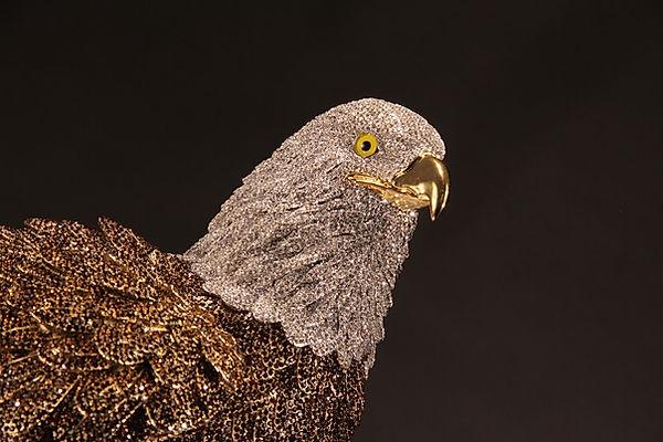 Bald Eagle 05.jpg