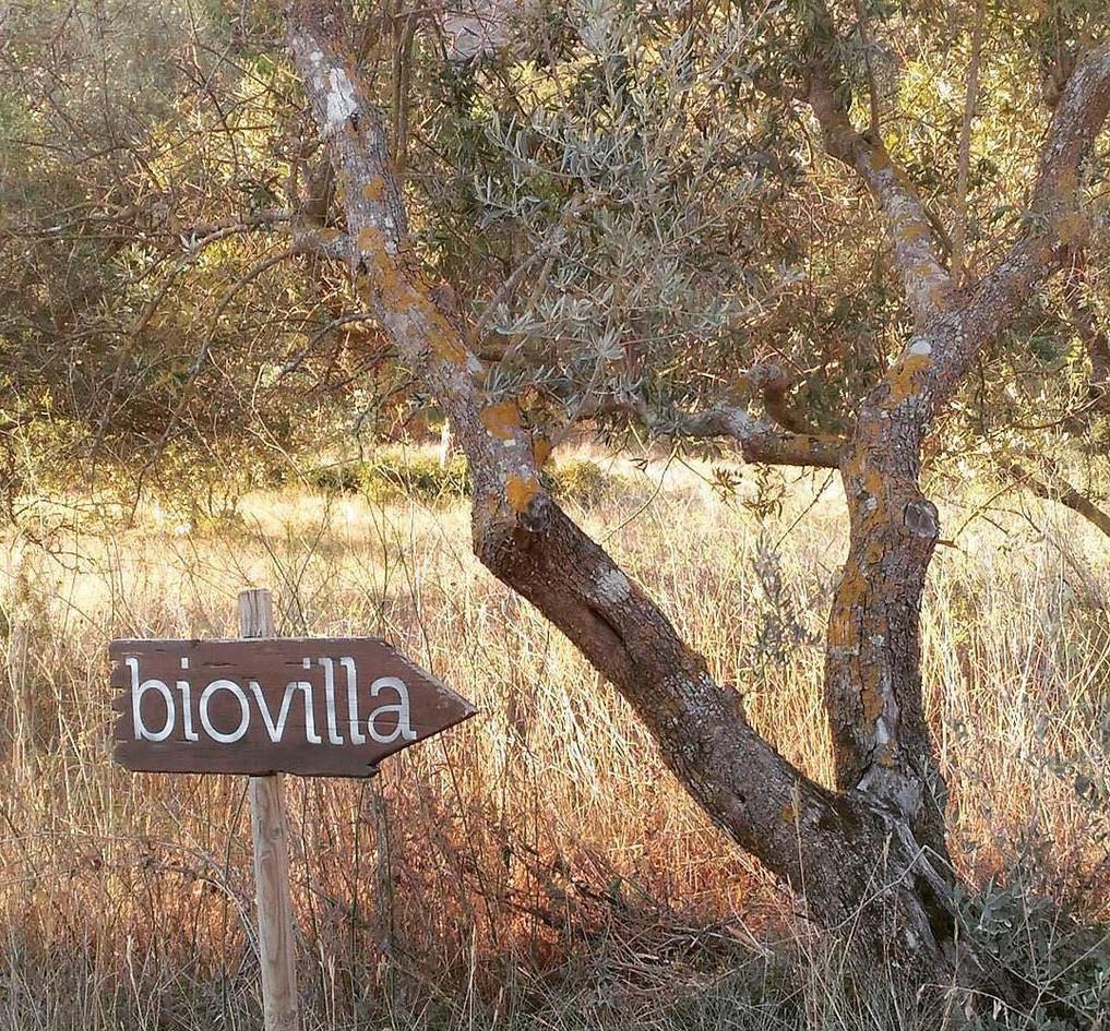 Biovilla orgánica