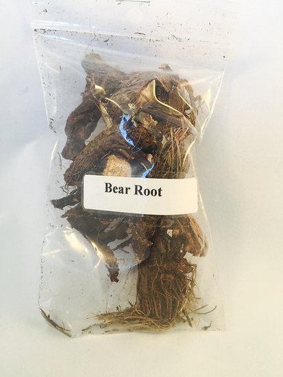 Bear Root