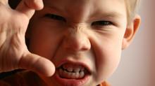O código da raiva na família