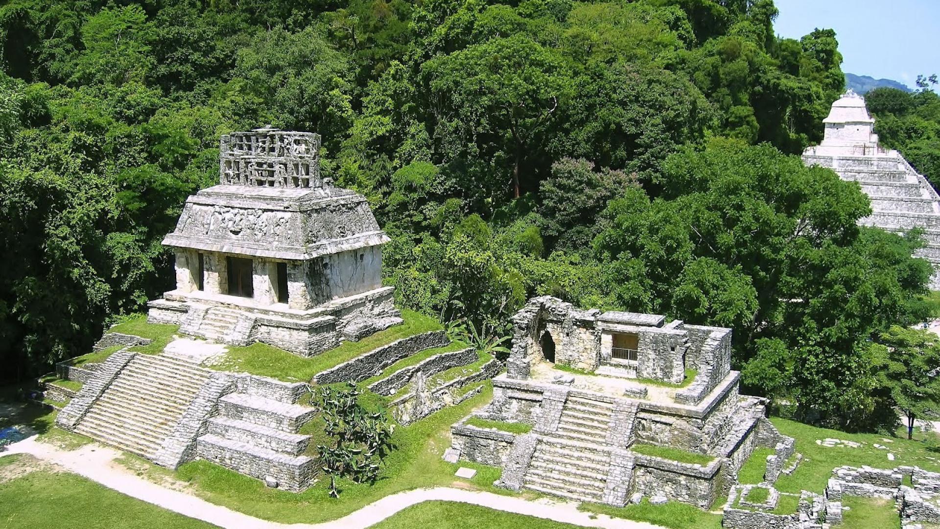 Preceptoria Quintana Roo