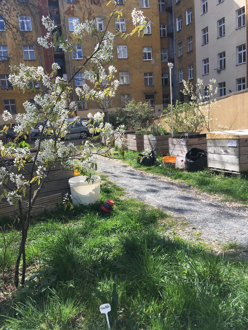 Vnitroblok Mečislavova