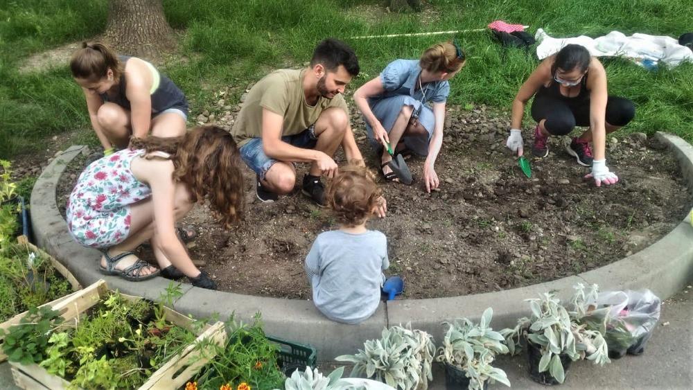 Street Gardening na Jezerce