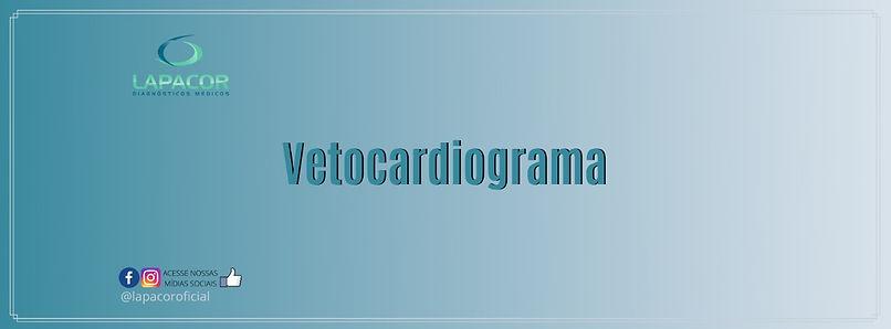 Vetocardiograma