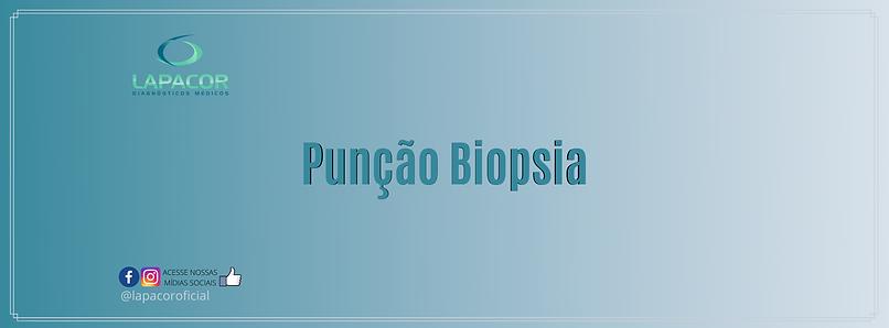 punção biopsia