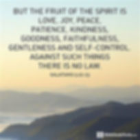 fruit of the spirit.jfif
