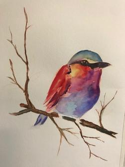 watercolor3_d600.jpg