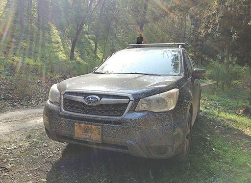 RTGV-Vehicular.jpg
