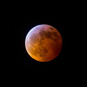 Blood Wolf Moon1.jpg