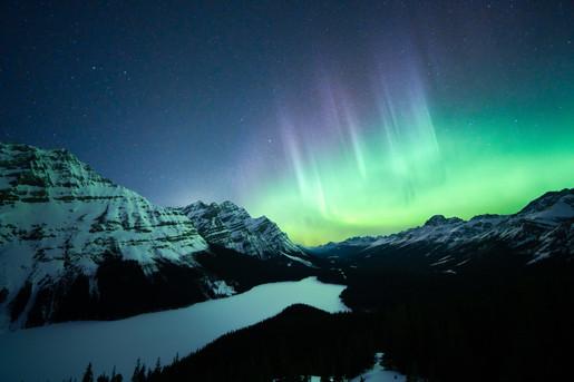 Peyto Aurora 1 5mb.jpg