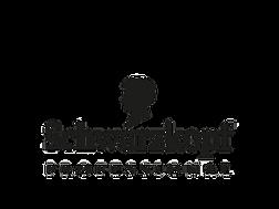 schwarzkopf-professional-logo-markets (2