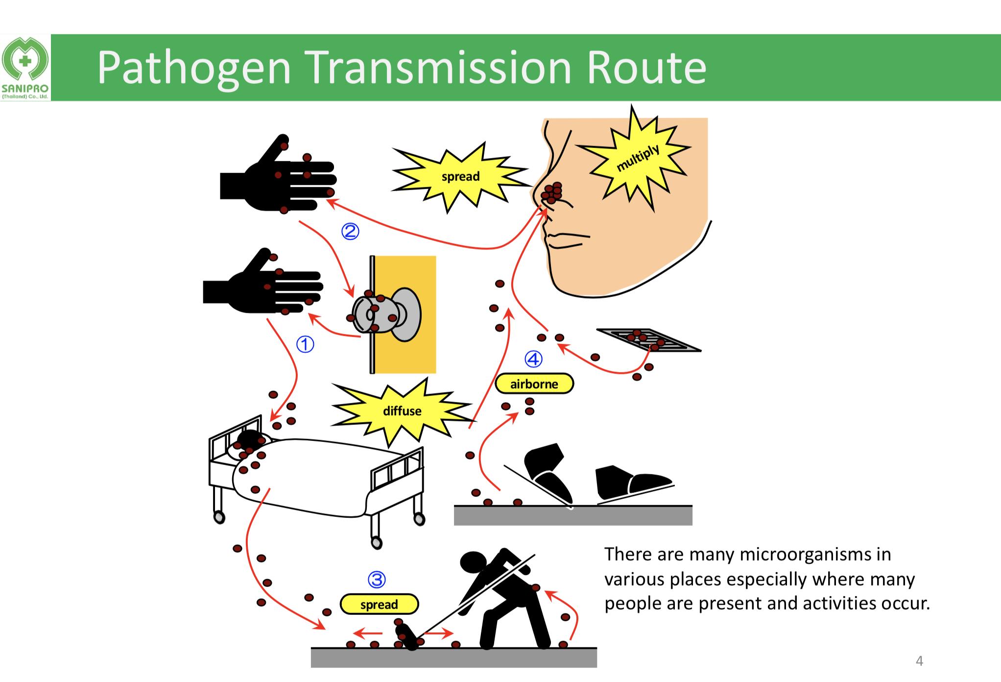 Transmission Routes