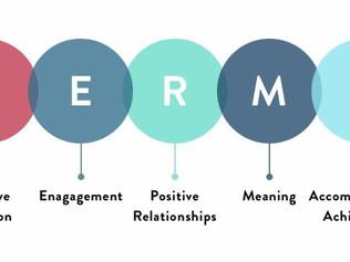 Ευημερία (well-being) στο χώρο εργασίας στη βάση του μοντέλου PERMA
