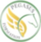 LOGO COULEUR PEGASUS FORMATION.png
