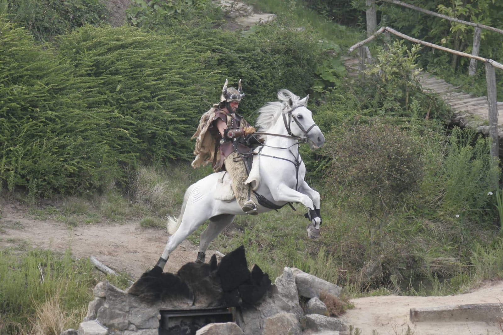Viking Puy du Fou