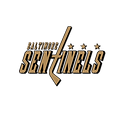 sentinels_logo3.png