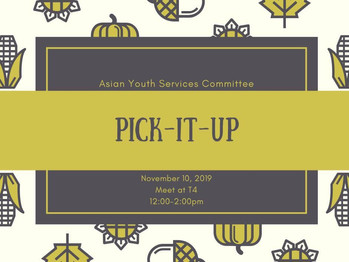 11/10 Pick it Up (12-2pm)
