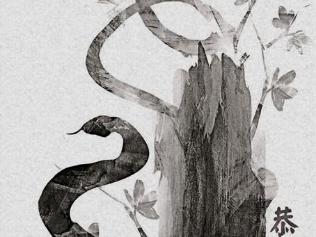 Mountain Snake on a Walk to Awosting Lake