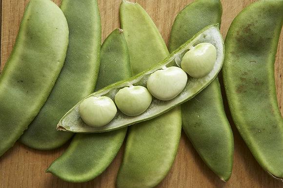 Baby Lima Beans - Half Bushel of Shelled Beans