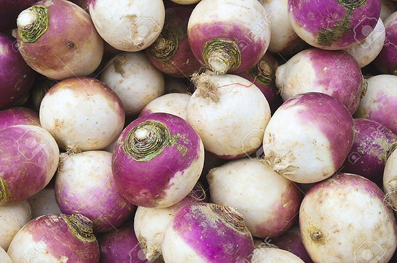 Turnips - Container
